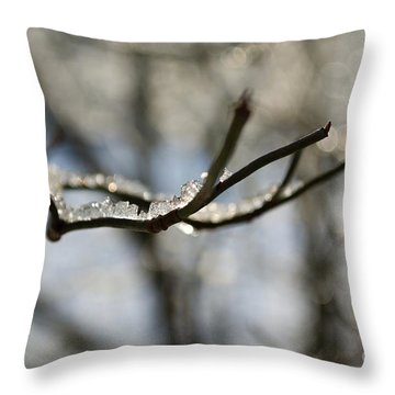 Winter Impressions Vi Throw Pillow