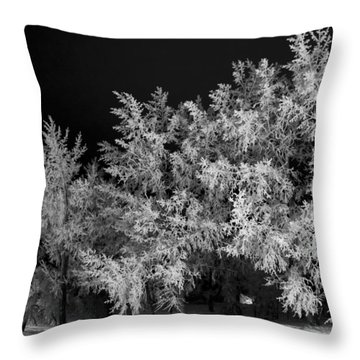 Winter In Canada Throw Pillow