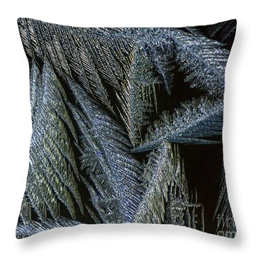 Winter In Canada- Winter Frost Throw Pillow by Inspired Nature Photography Fine Art Photography