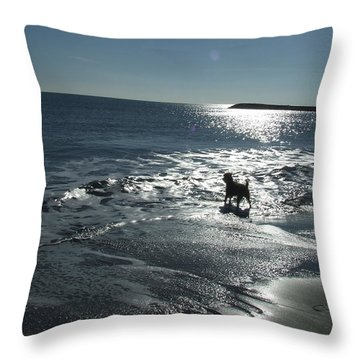 winter in Les Ste Marie de la mer Throw Pillow