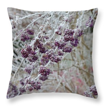Throw Pillow featuring the photograph Winter In Lila by Felicia Tica