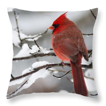 Winter In Red Throw Pillow