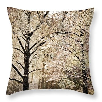Winter In St. Louis Throw Pillow by Marty Koch