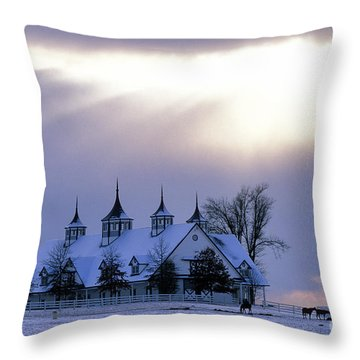 Winter In The Bluegrass - Fs000286 Throw Pillow