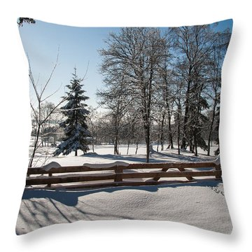 winter in the Harz area Throw Pillow by Andreas Levi