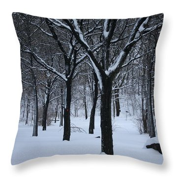 Throw Pillow featuring the photograph Winter In The Park by Dora Sofia Caputo Photographic Art and Design