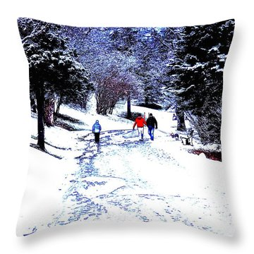 Throw Pillow featuring the photograph Winter In The Park by Zinvolle Art