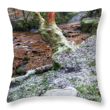 Winter In The Woods Throw Pillow by Adrian Evans