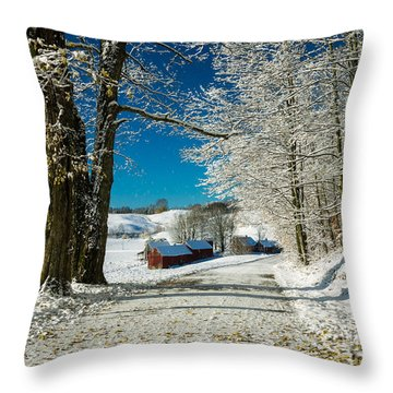 Winter In Vermont Throw Pillow by Edward Fielding