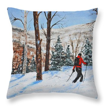Winter In Vermont Woods Throw Pillow