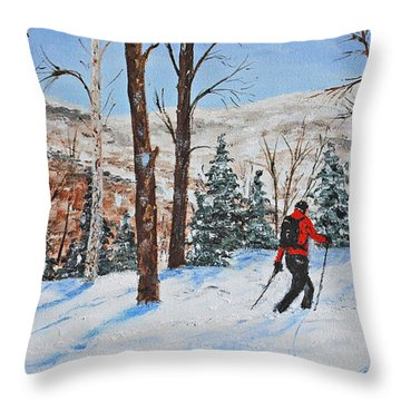 Winter In Vermont Woods Throw Pillow