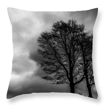 Winter Is Here Throw Pillow by Tim Buisman