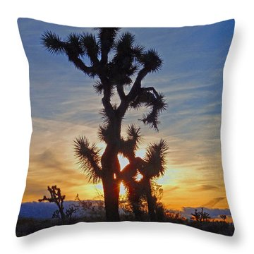 Winter Joshua Throw Pillow by Suzette Kallen