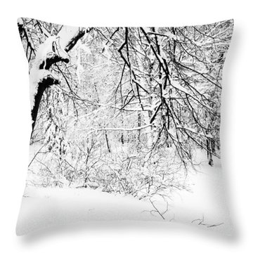 Winter Lace II Throw Pillow by Jenny Rainbow