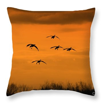 Winter Landing No.2 Throw Pillow by Neal Eslinger