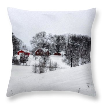 Winter Landscape 5 Throw Pillow