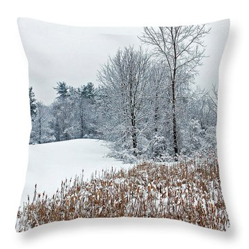 Winter Landscape Throw Pillow by Aimee L Maher Photography and Art Visit ALMGallerydotcom