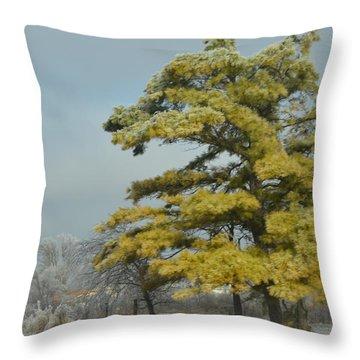 Winter Landscape Throw Pillow by Debra Martz