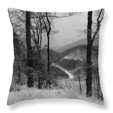 Winter Landscape Throw Pillow by Eva Csilla Horvath
