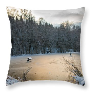 Winter Landscape With Frozen Lake And Warm Evening Twilight Throw Pillow by Matthias Hauser