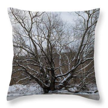 Throw Pillow featuring the photograph Winter  Leif Sohlman by Leif Sohlman