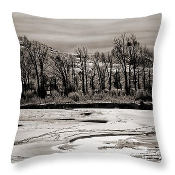 Throw Pillow featuring the photograph Winter Light by J L Woody Wooden