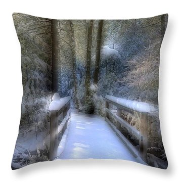 Winter Light On Bridge Throw Pillow