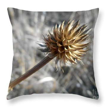 Winter Master Throw Pillow by Tim Good