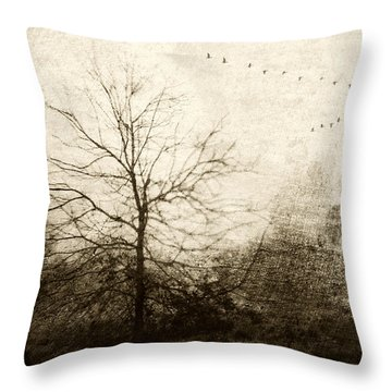 Designs Similar to Winter Migration by Carol Leigh