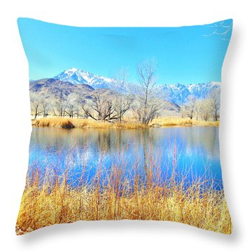 Winter Mill Pond Style Throw Pillow