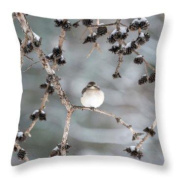 Winter Mockingbird Throw Pillow