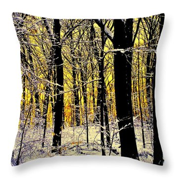 Winter Mood Lighting Throw Pillow by Frozen in Time Fine Art Photography