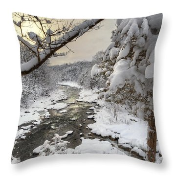 Winter Morning Throw Pillow by Bill Wakeley