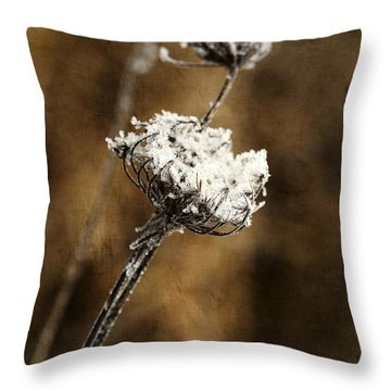 Winter Morning Throw Pillow by Bonnie Bruno