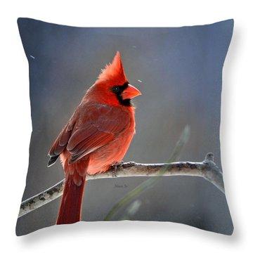Winter Morning Cardinal Throw Pillow