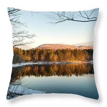 Winter Morning Glow Throw Pillow