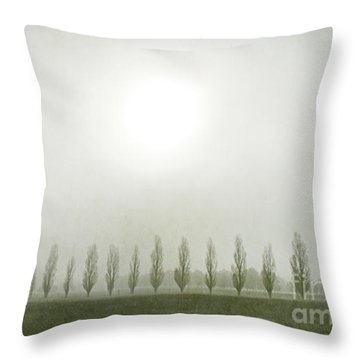 Winter Morning Londrigan 7 Throw Pillow by Linda Lees