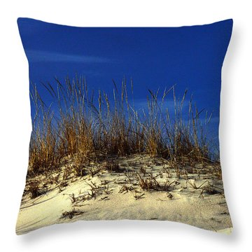 Throw Pillow featuring the photograph Winter Morning On The Dunes by Bill Swartwout
