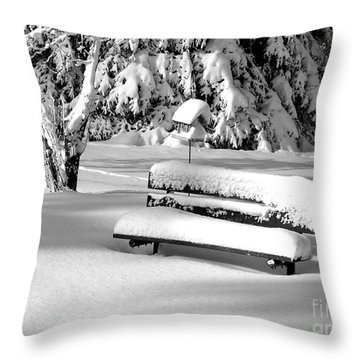Winter Morning Throw Pillow by Susan  Dimitrakopoulos