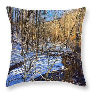 Winter Nature Walk Throw Pillow