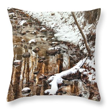 Winter - Natures Harmony Throw Pillow by Mike Savad