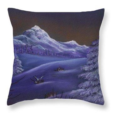 Winter Night Throw Pillow by Anastasiya Malakhova