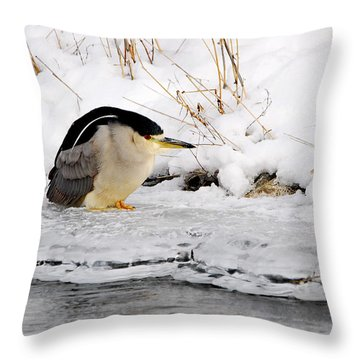 Winter Night Heron Throw Pillow