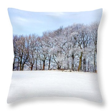 Winter Oak Throw Pillow by David Birchall