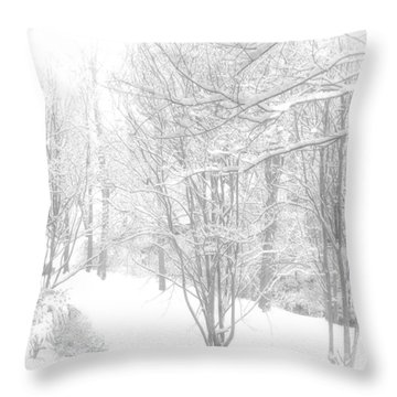 Winter Of '14 Throw Pillow by Larry Bishop