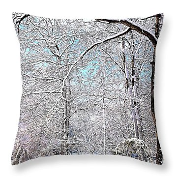 Winter On A Spring Day Throw Pillow by Pamela Hyde Wilson