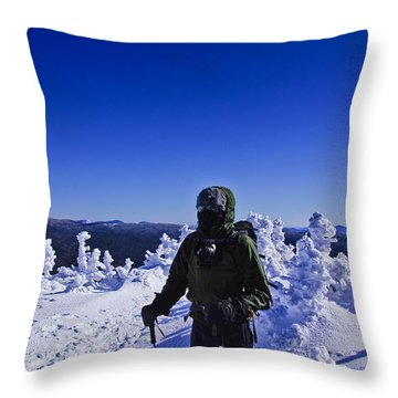 Winter On Mt Jackson Throw Pillow