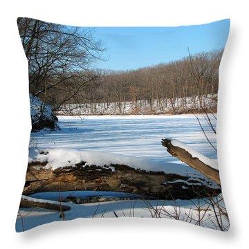 Winter On Sauk Lake 2 Throw Pillow