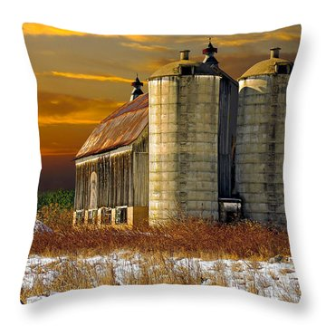 Throw Pillow featuring the photograph Winter On The Farm by Judy  Johnson