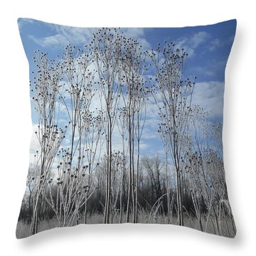 Winter On The Prairie Throw Pillow by Tim Good